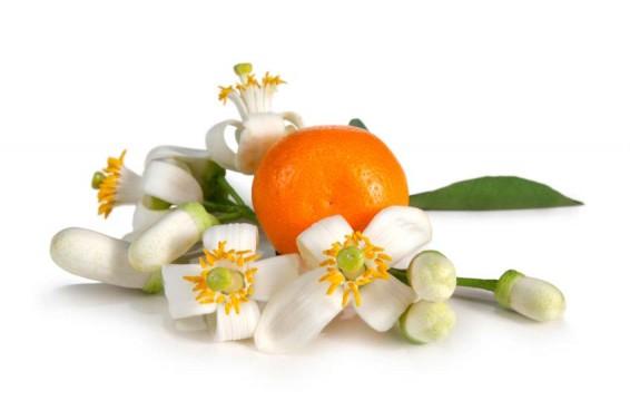neroli & fruit